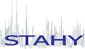 Workshop ICSH-STAHY 2020 Logo